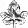 19-2000 (штампованный элемент, виногр. лист малый)